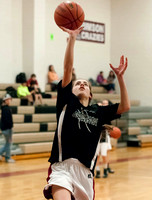 2015-01-28 LMMS 8th Grade Girls vs PGMS